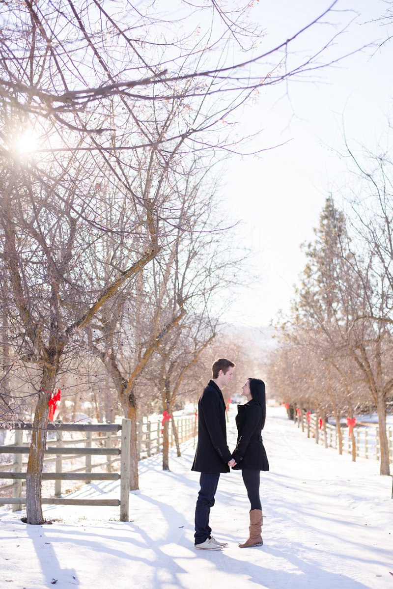 Engagement Photography Volkmanm Tree Farm Kelowna (2)