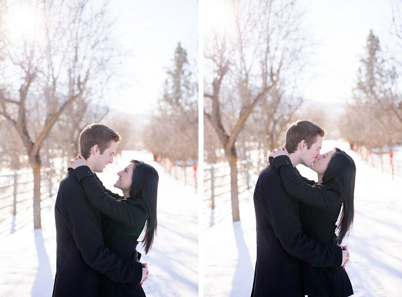Engagement Photography Volkmanm Tree Farm Kelowna (4)