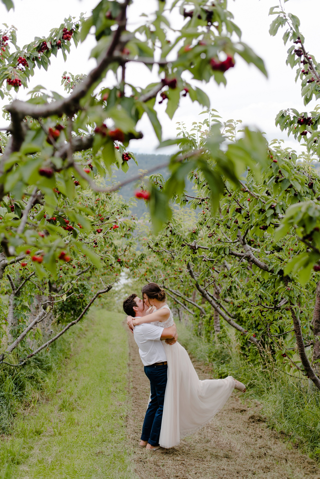 Bride and groom in the cherry orchard at Sproule and Sons Farm, Lake Country